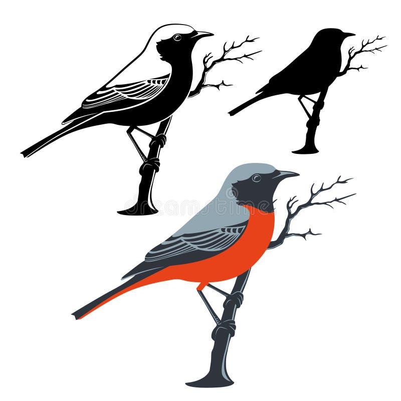 Птица сидит на ветви также вектор иллюстрации притяжки corel иллюстрация штока
