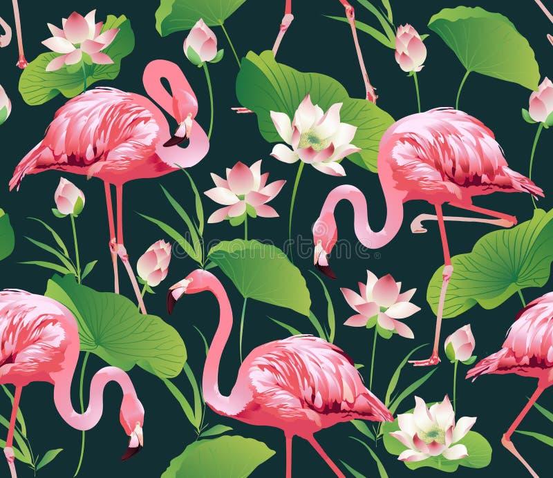 Птица фламинго и тропическая предпосылка цветков лотоса - безшовная картина иллюстрация штока