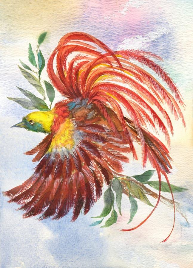 птица яркая иллюстрация вектора