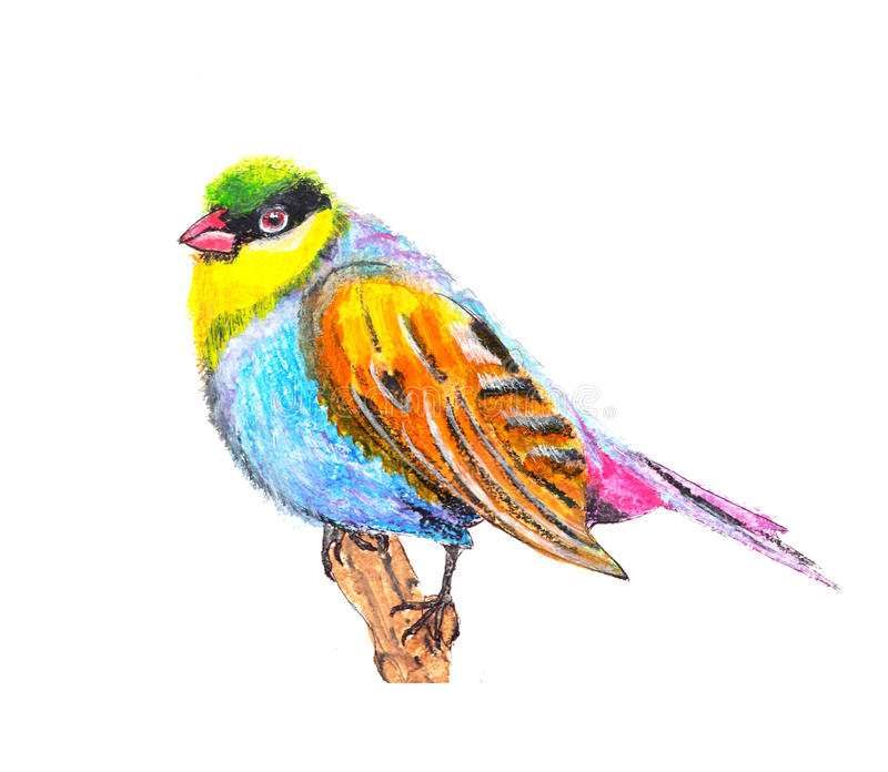 Птица иллюстрация вектора