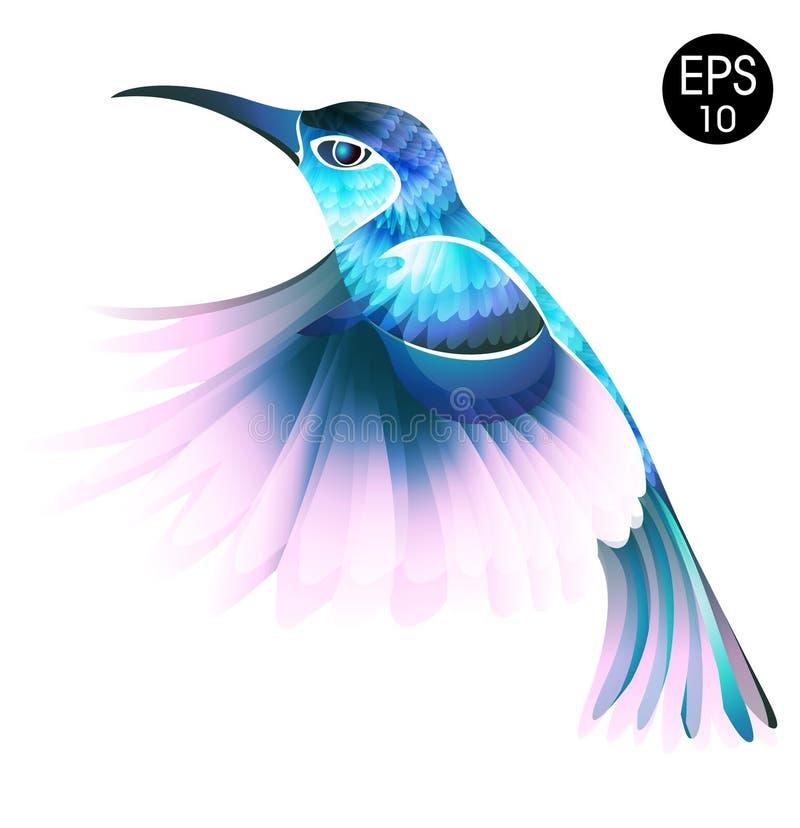 Птица Colibri Яркая иллюстрация вектора экзотической птицы припевать летания на белой предпосылке бесплатная иллюстрация