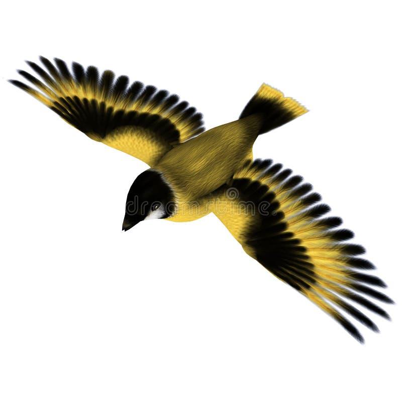 Птица Goldfinch летания бесплатная иллюстрация