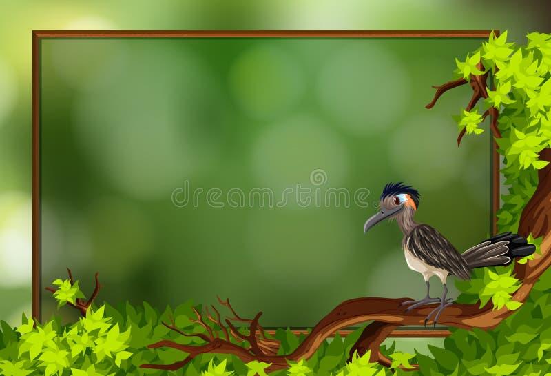 Птица roadrunner в рамке природы иллюстрация штока