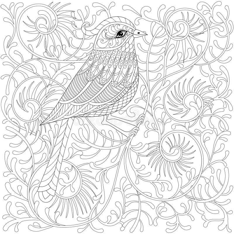 Птица zentangle вектора Колибри o шаржа экзотический и тропический бесплатная иллюстрация