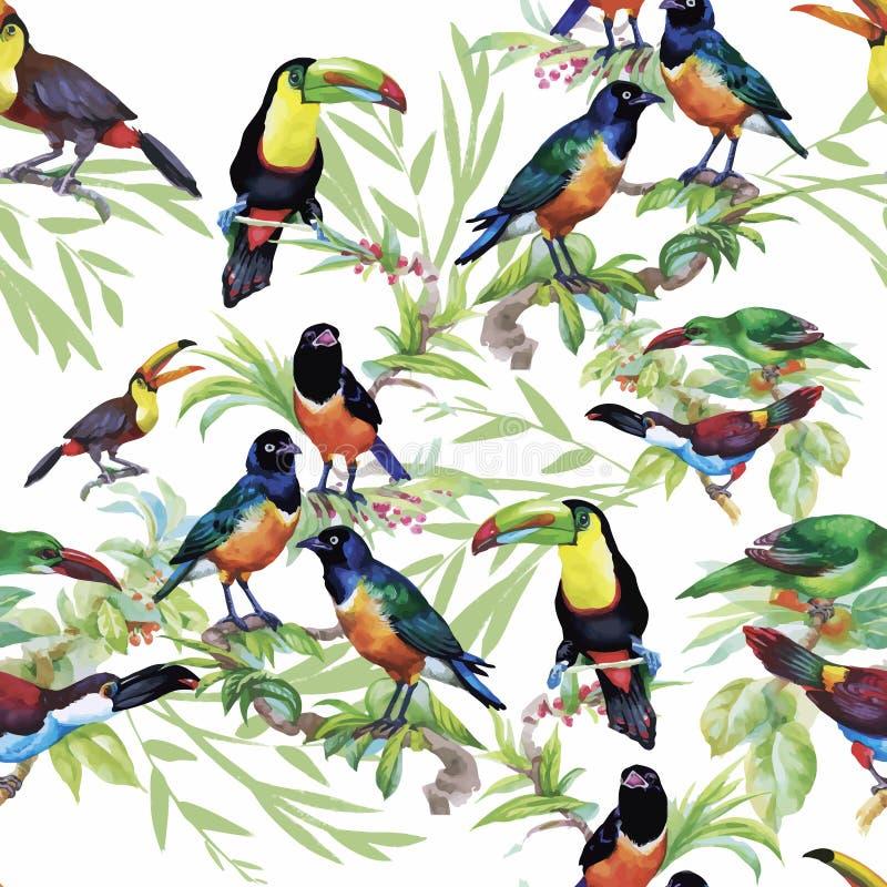 Птицы акварели одичалые экзотические на картине цветков безшовной на белой предпосылке стоковое фото