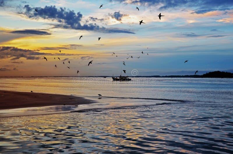 Птицы восхода солнца и шлюпка рыболова стоковая фотография