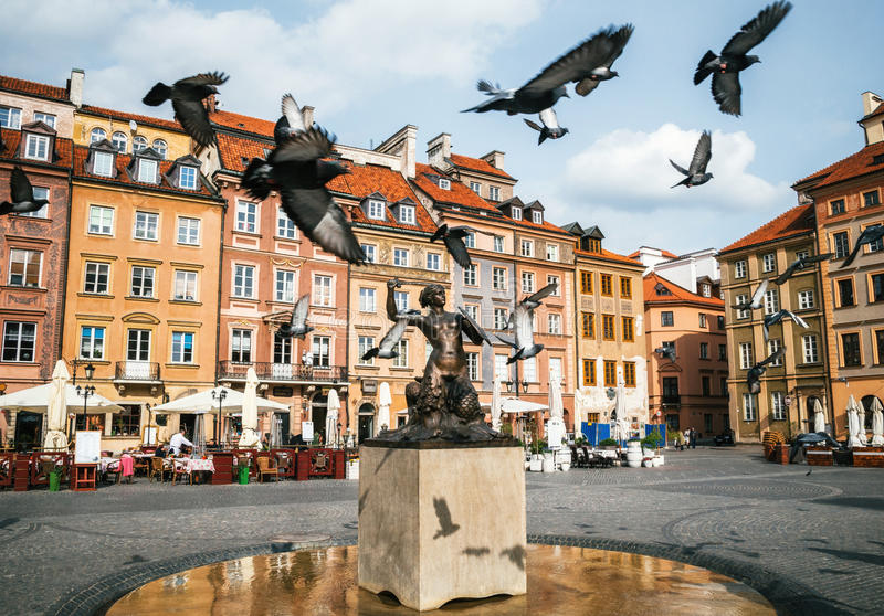 Птицы голубей летают через рыночную площадь городка Miasto взгляда старую с статуей Syrena русалки в Варшаве, Польше стоковое изображение