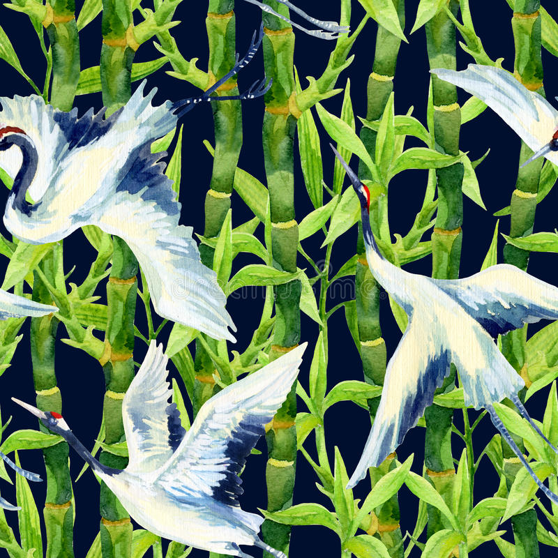 Птицы крана акварели картина азиатской безшовная иллюстрация штока