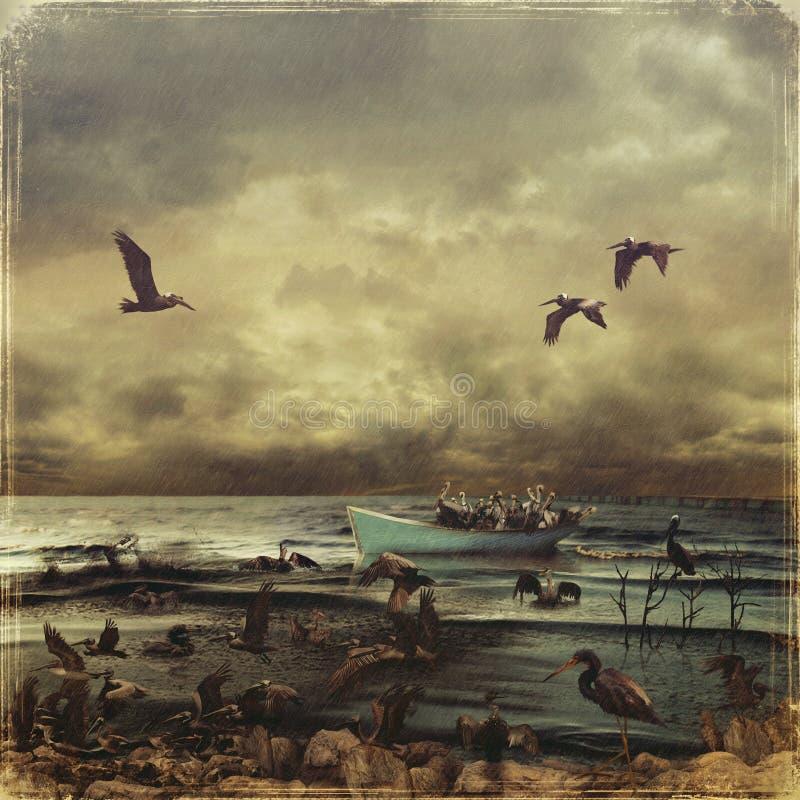 птицы маслообразные бесплатная иллюстрация