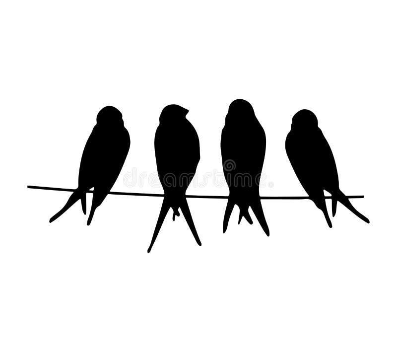 Птицы на силуэте провода изолированном на белой предпосылке иллюстрация штока