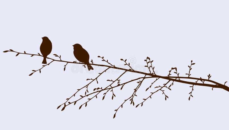 Птицы на sprig бесплатная иллюстрация