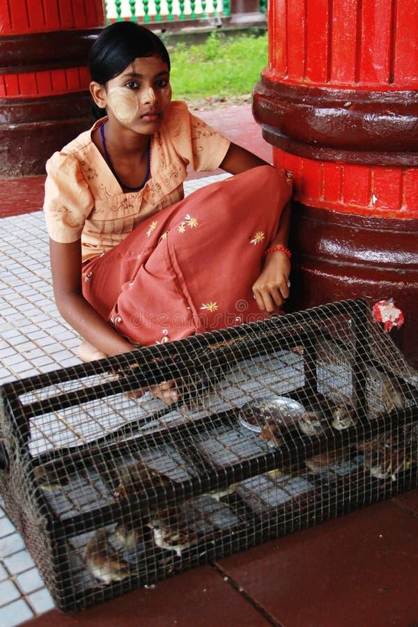 птицы освобождают девушку myanmar продавая к стоковая фотография rf