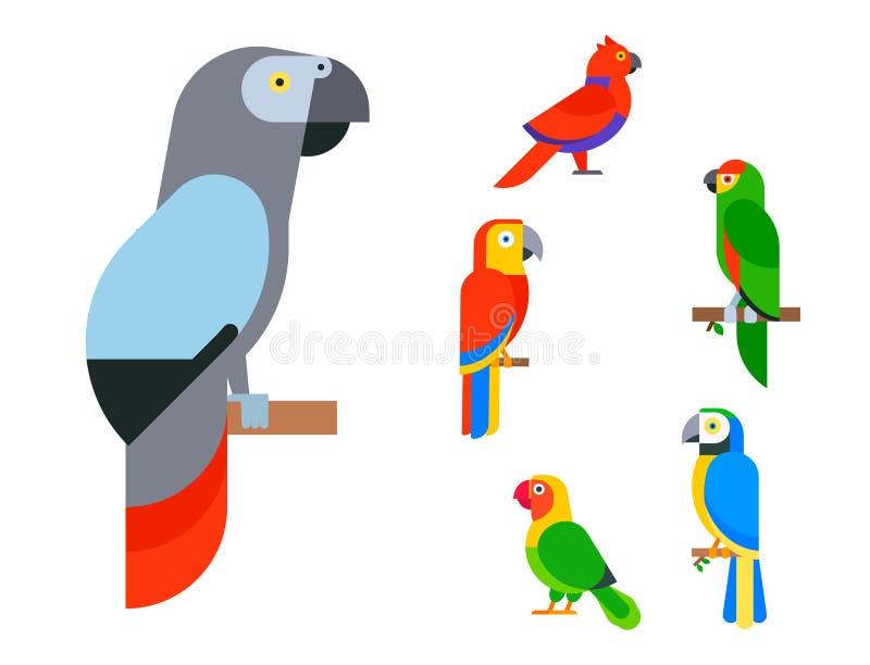 Птицы попугаев разводят длиннохвостые попугаев животной природы вида тропические иллюстрация штока
