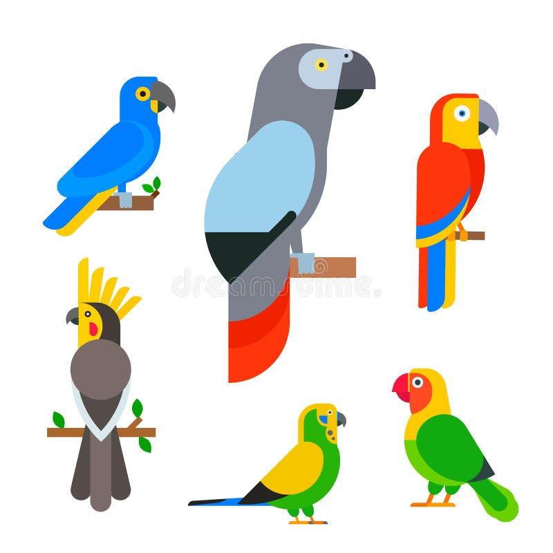 Птицы попугаев разводят образования длиннохвостых попугаев животной природы вида иллюстрацию вектора любимчика тропического красо иллюстрация штока