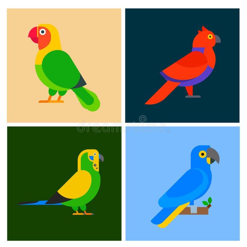 Птицы попугаев разводят образования длиннохвостых попугаев природы брошюры flayer вида иллюстрацию вектора любимчика животного тр бесплатная иллюстрация