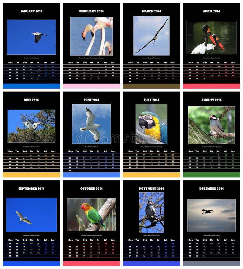 Птицы calendar на 2014 стоковые изображения rf