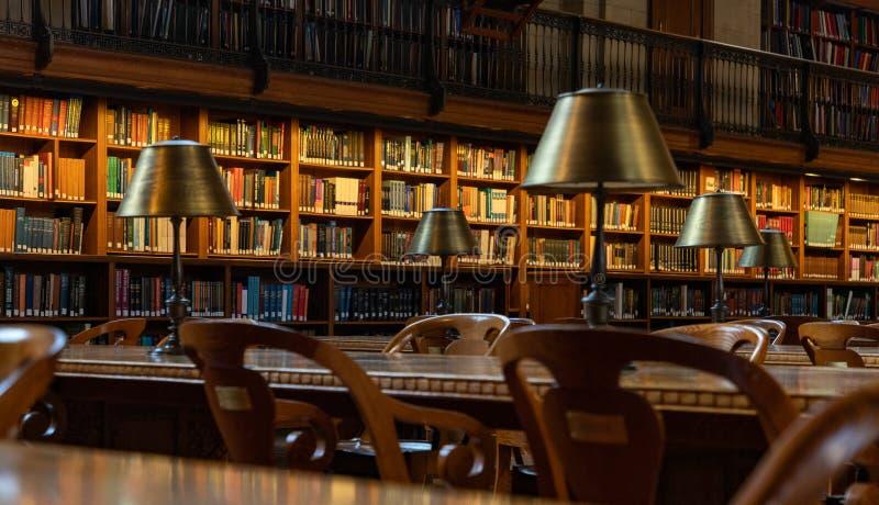 Публичная библиотека II Нью-Йорка стоковые фотографии rf