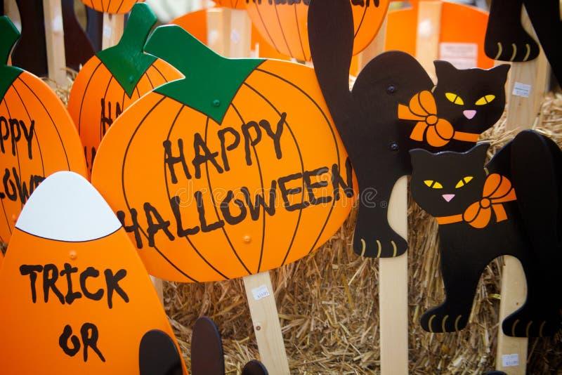 Пугающие черные коты и праздничные оранжевые тыквы стоковые фотографии rf