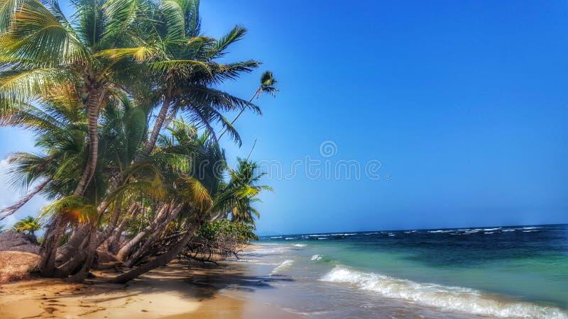 Пуерто Рико стоковое изображение