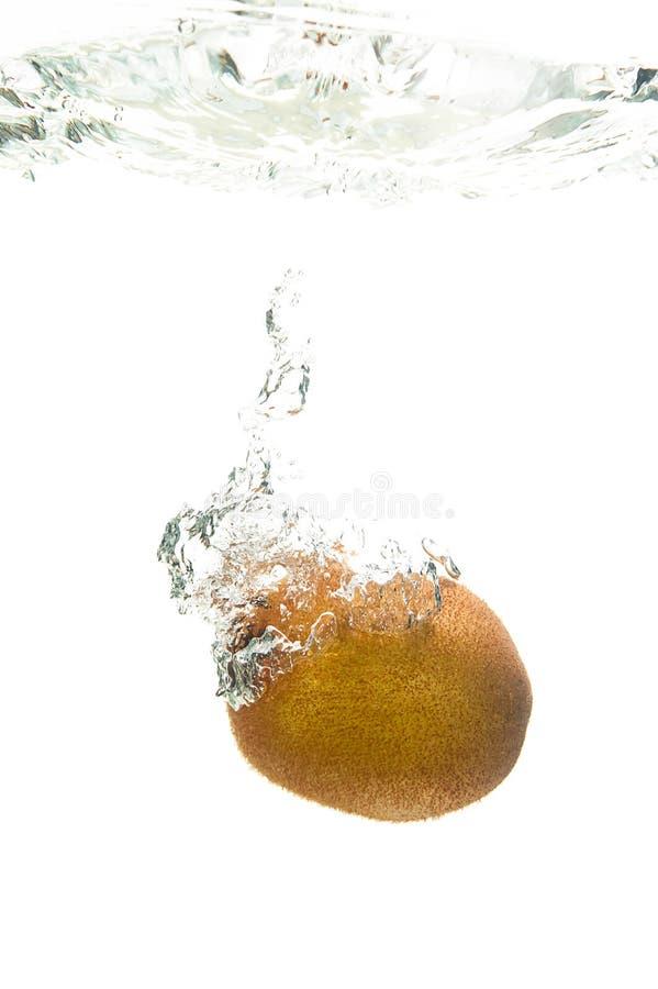 Пузыри кивиа стоковые изображения rf