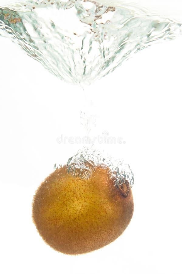 Пузыри кивиа стоковое фото