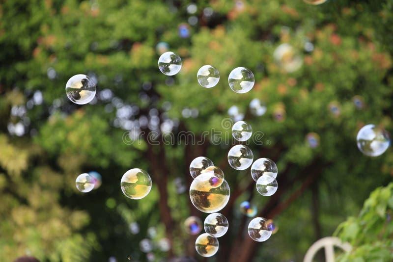 Пузыри мыла плавая в воздух с естественным зеленым цветом запачкали предпосылку bokeh с космосом экземпляра стоковые фотографии rf