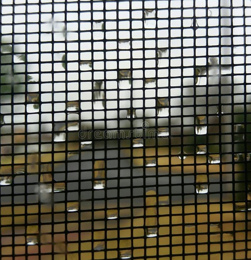 Пузыри на окне стоковые фото