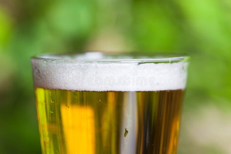 Пузыри пива стоковое фото rf