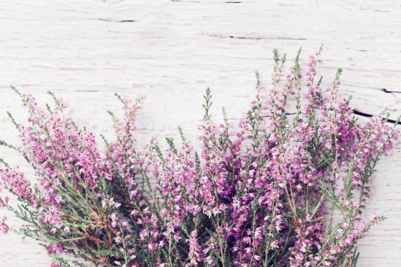 Пук вереска vulgaris, erica цветка вереска, ling на затрапезном взгляд сверху деревянного стола Пастельная поздравительная открыт стоковые изображения rf