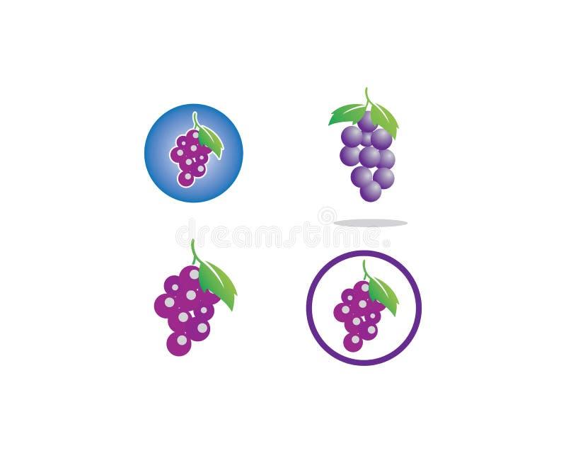 Пук виноградин вина со значком лист для иллюстрации еды иллюстрация штока