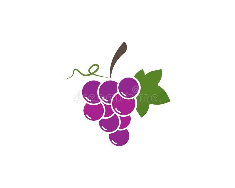 Пук виноградин вина с значком лист иллюстрация штока