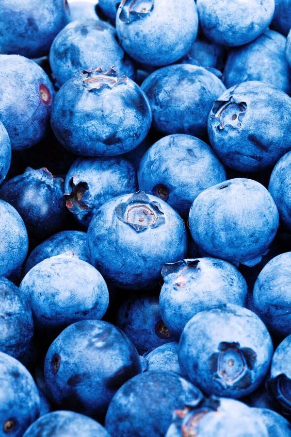 Пук голубик - близкая поднимающая вверх съемка студии Фильтрованное изображение: влияние обрабатываемое крестом винтажное стоковое фото rf