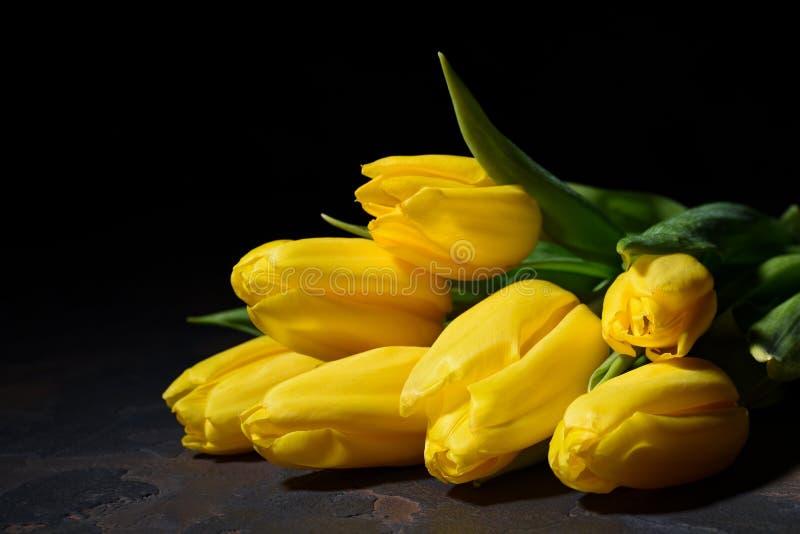 Пук желтых тюльпанов на темной предпосылке стоковые фото