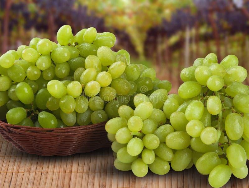 Пук зеленых виноградин на таблице стоковые фото