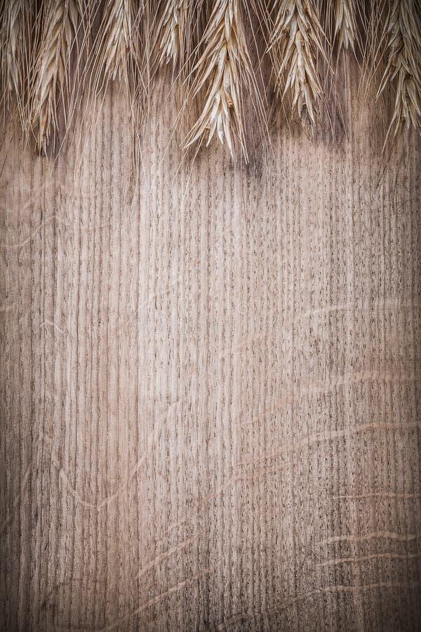 Пук золотых ушей рож пшеницы на деревянной космической пище экземпляра доски и стоковые изображения