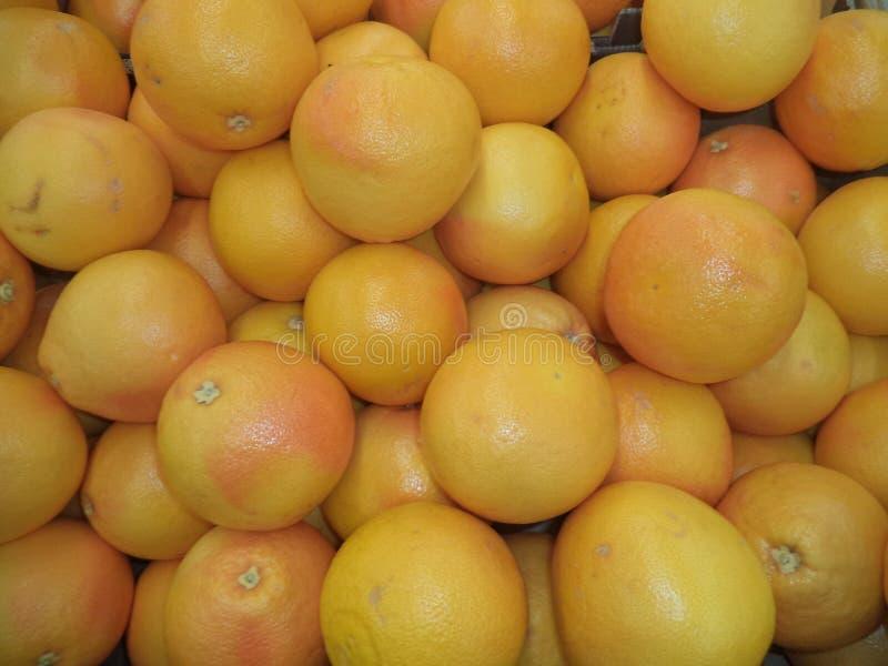 Пук зрелых красных грейпфрутов стоковые фотографии rf