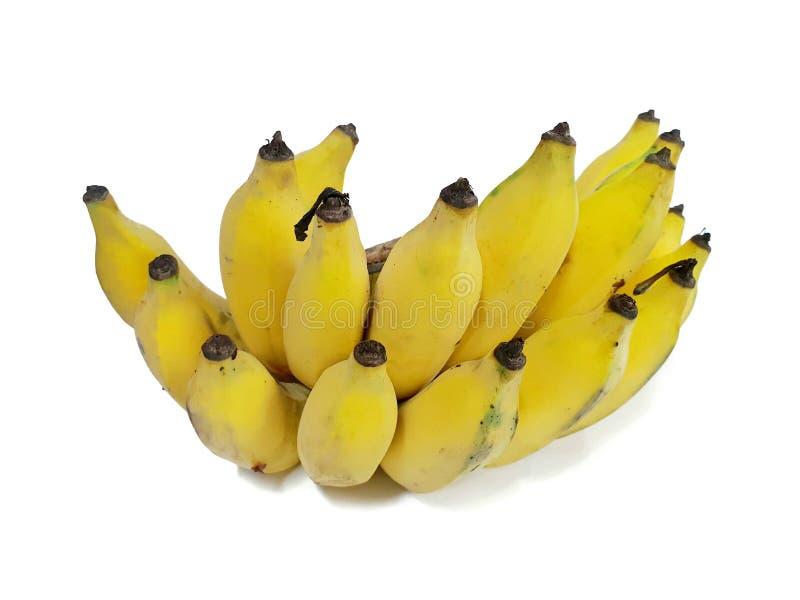 Пук излишек зрелого банана изолированного на белой предпосылке стоковое изображение rf