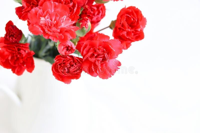 Пук красивых красных цветков гвоздики стоковые изображения