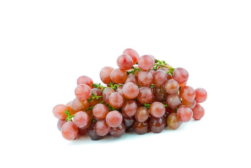 Пук красных виноградин, свежий с водой падает Изолировано на белизне стоковые фото