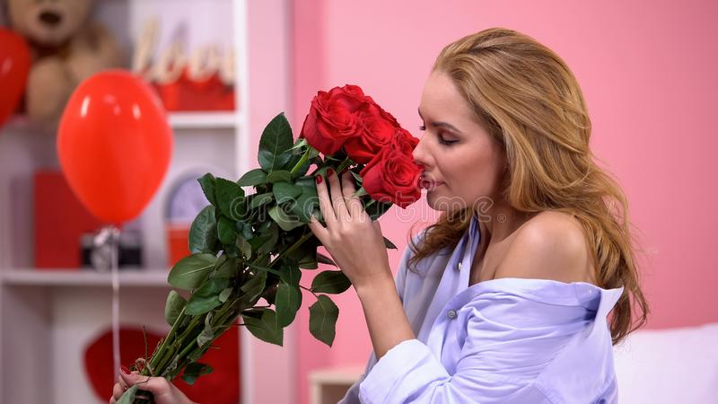 Пук красных роз, доставка обольстительной женщины пахнуть букета, день Святого Валентина стоковое фото rf