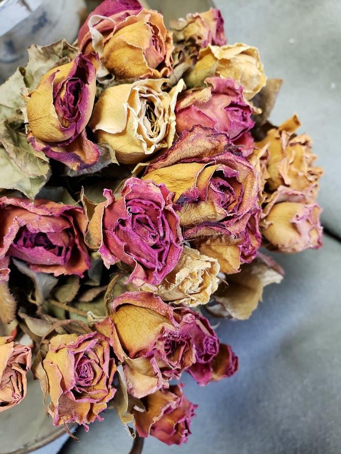 Пук красочных высушенных роз на таблице стоковые фото