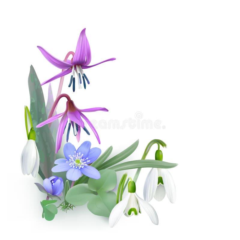 Пук леса цветет, посыльные весны - предпосылки иллюстрация штока