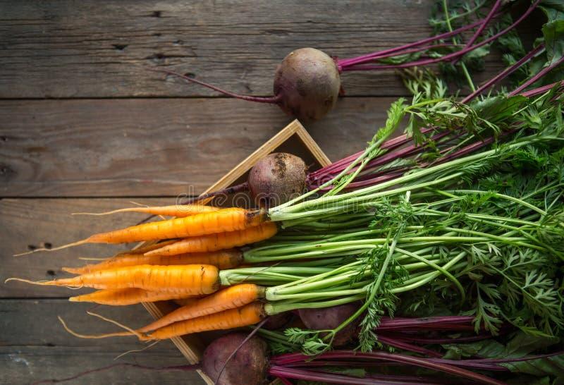 Пук морковей и бураков Свежие моркови, куча бураков с зелеными стержнями Сырцовые моркови и бураки на деревенской деревянной задн стоковое изображение