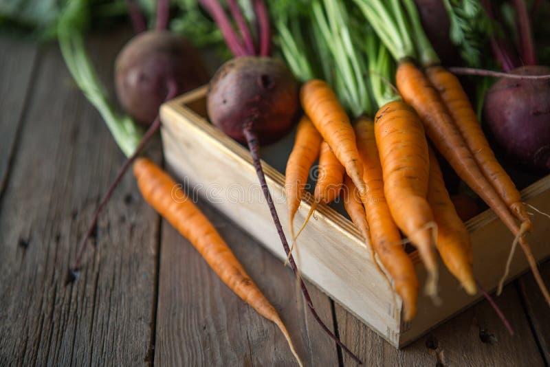 Пук морковей и бураков Свежие моркови, куча бураков с зелеными стержнями Сырцовые моркови и бураки на деревенской деревянной задн стоковые фото
