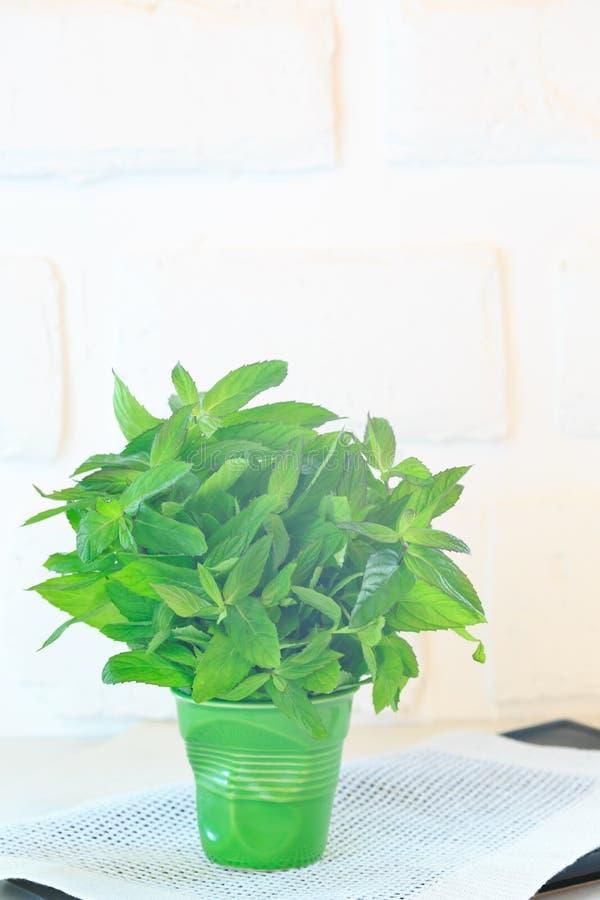 Пук мяты в зеленом стекле стоковое изображение rf