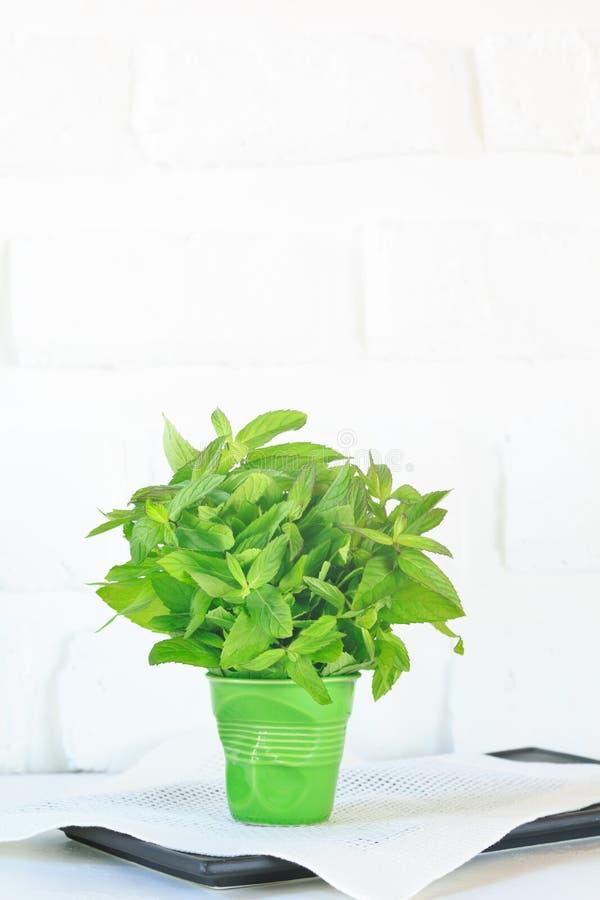 Пук мяты в зеленом стекле стоковые изображения rf