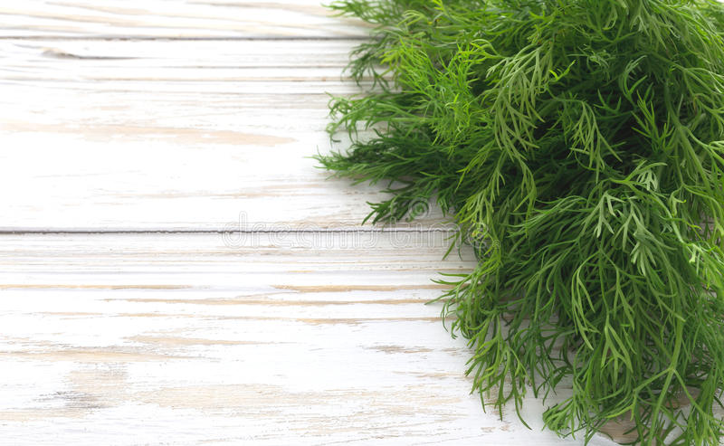 Пук свежего органического укропа стоковое изображение