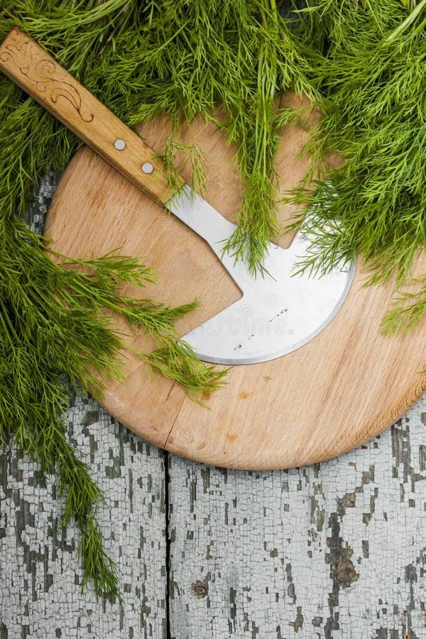 Пук свежего органического укропа стоковая фотография rf