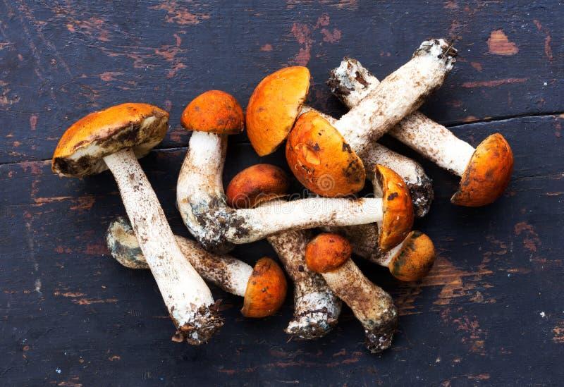 Пук свежего съестного одичалого подосиновика апельсин-крышки грибов & x28; Aurantiacum& x29 лекцинума; На старом черном деревянно стоковые изображения rf