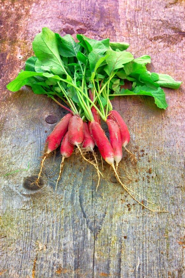 Пук свеже выбранного завтрака красного & белого органического разнообразия французского на деревянной предпосылке стоковые фотографии rf